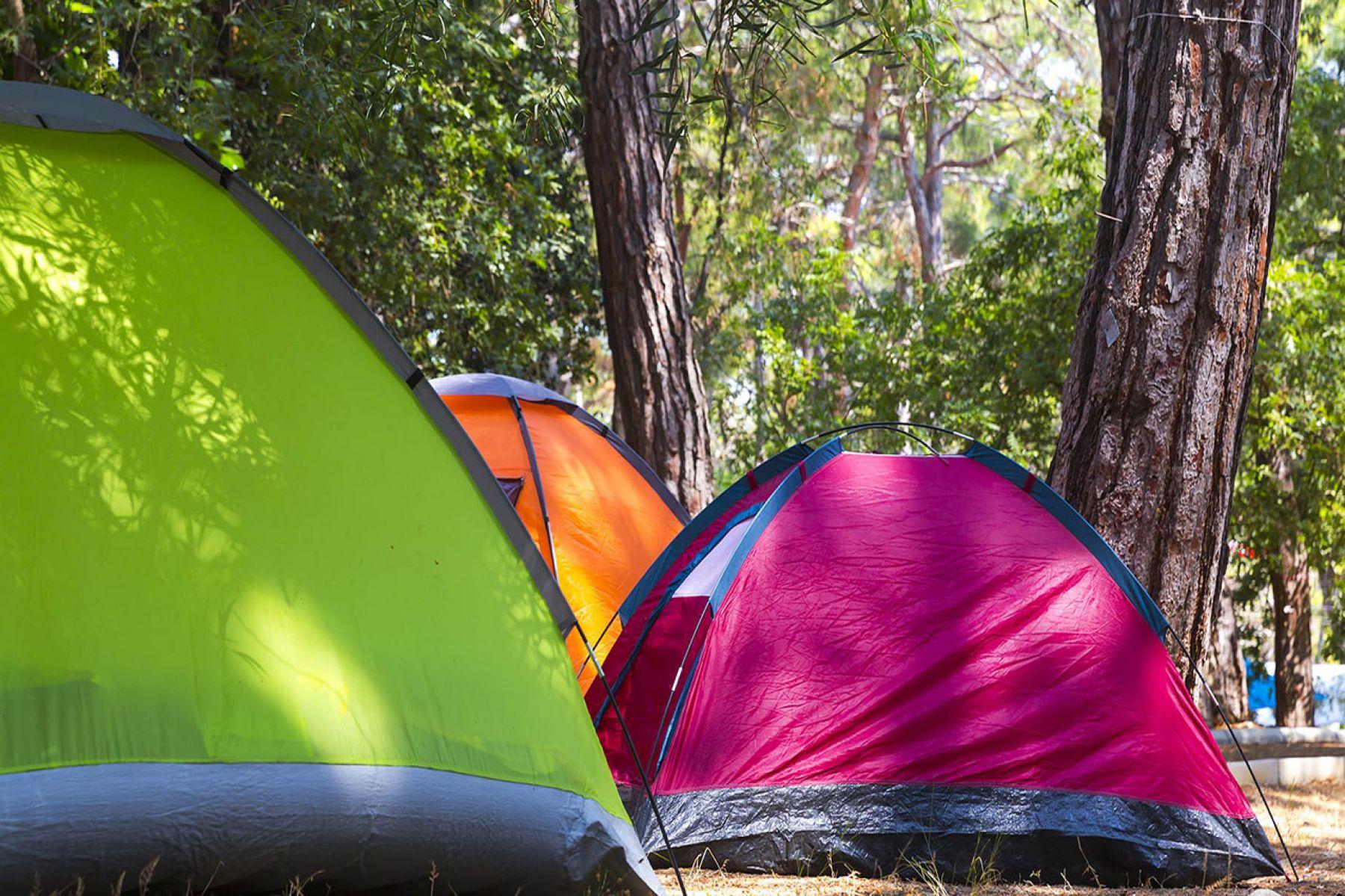Ünye Kamp Alanı