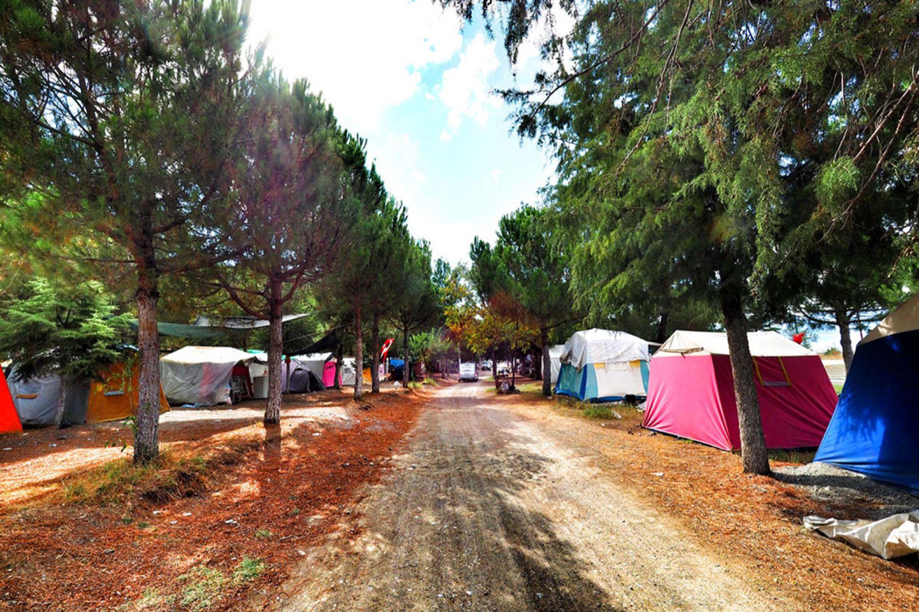 Ünye Çınarsuyu Kamp Alanı